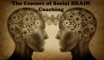 social-brain-1440x900